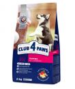 Club 4 paws koeratoit kutsikatele 4kg(2x2kg)