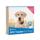 Tractive GPS positsioneerimise seade S kuni 4kg koertele